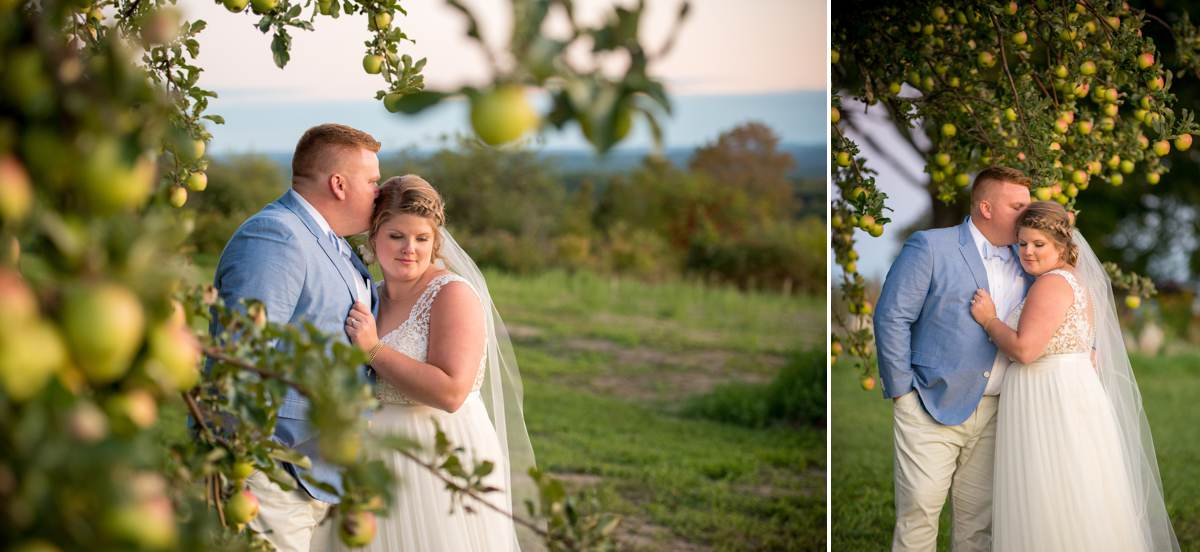 Wedding photos at a Maine apple orchard
