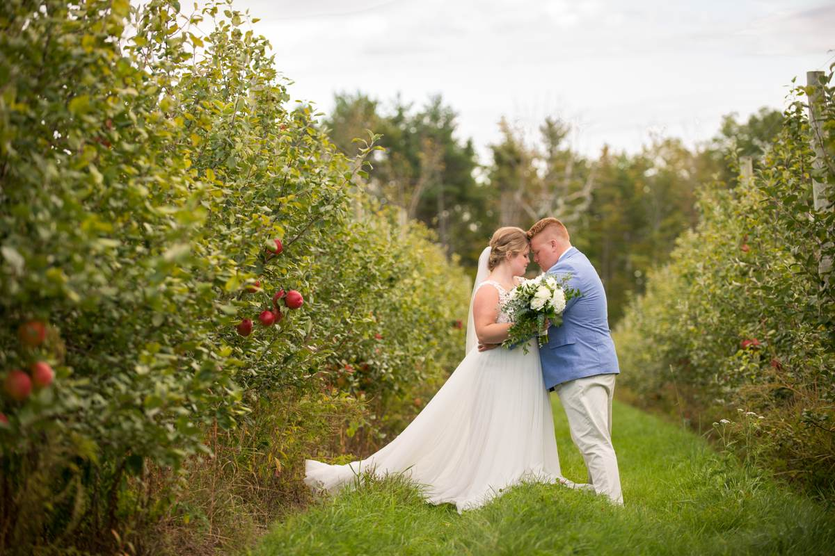 Couple in orchard at Vista of Maine Vineyard & Cidery on wedding day
